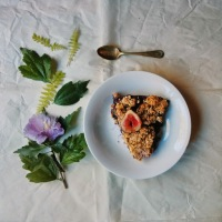 Fig Blueberry Crisp